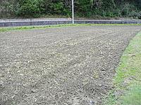 トラクターで掘り起こしただけの畑以前