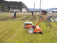 小型耕運機2台で畑を耕します。